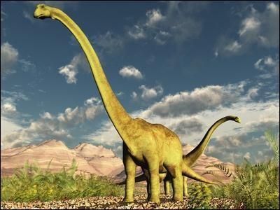 Quels étaient les plus grands dinosaures ?