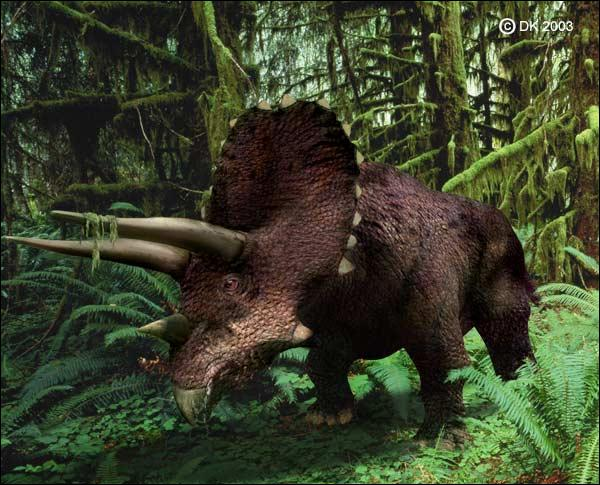 Quelles étaient les défenses du tricératops ?