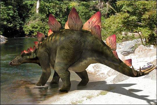 Où étaient situées les défenses du stégosaure ?