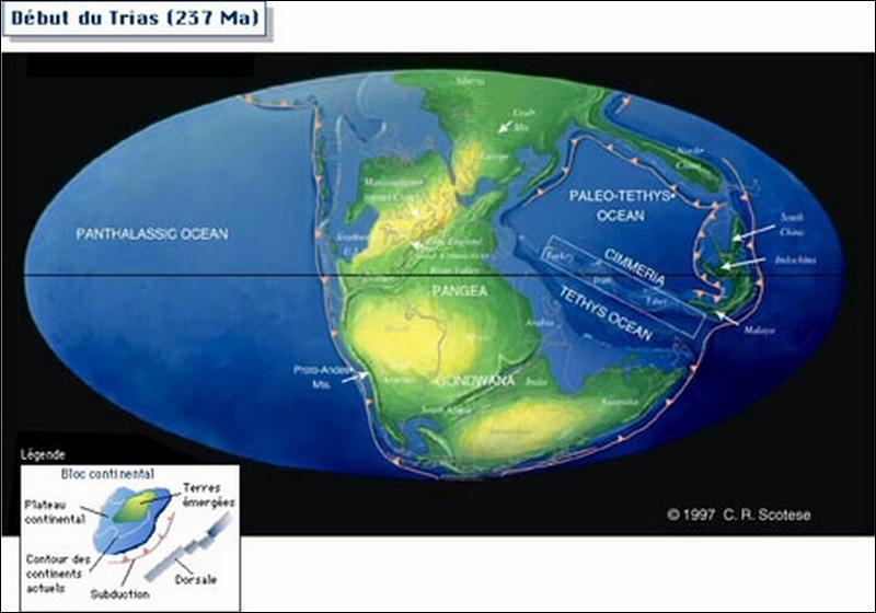 Où les dinosaures vivaient-ils ?