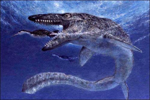 Les mosasaures étaient-ils des dinosaures marins ?