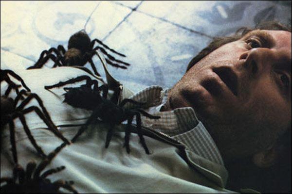 Arachnophobie (1990)  22_UH6U7