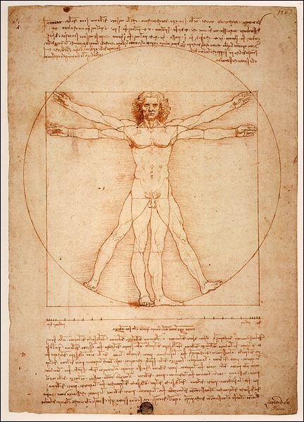 Qui a dessiné  l'homme de Vitruve  ?