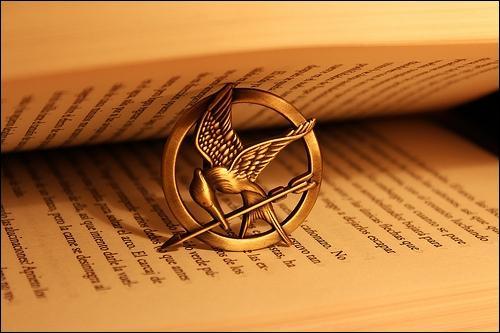 Dans le film, qui donne le geai moqueur à Katniss ?