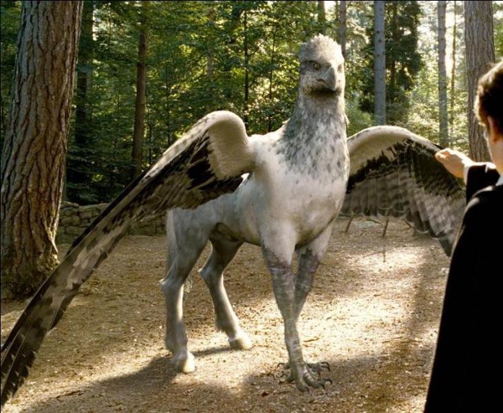 Quelle est cette créature apparue dans  Harry Potter  ?