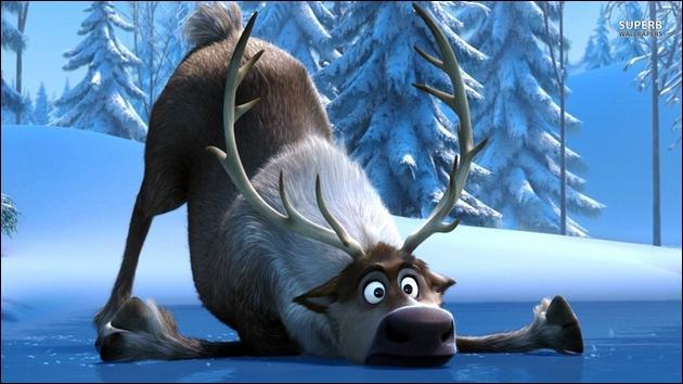 Comment s'appelle le renne ?