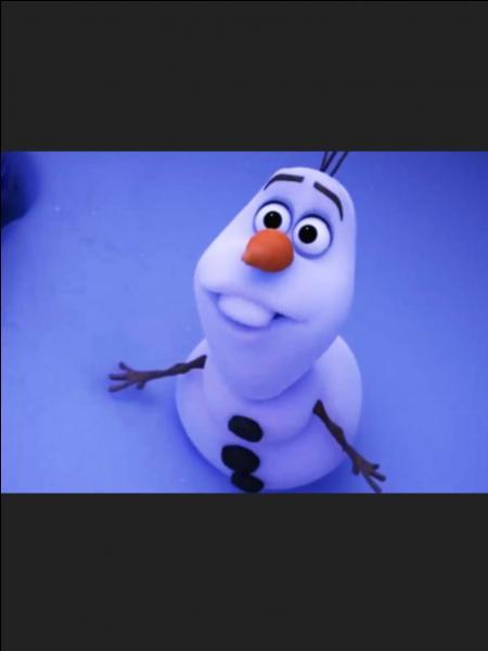 Comment s'appelle le bonhomme de neige ? Qu'aime-t-il ?
