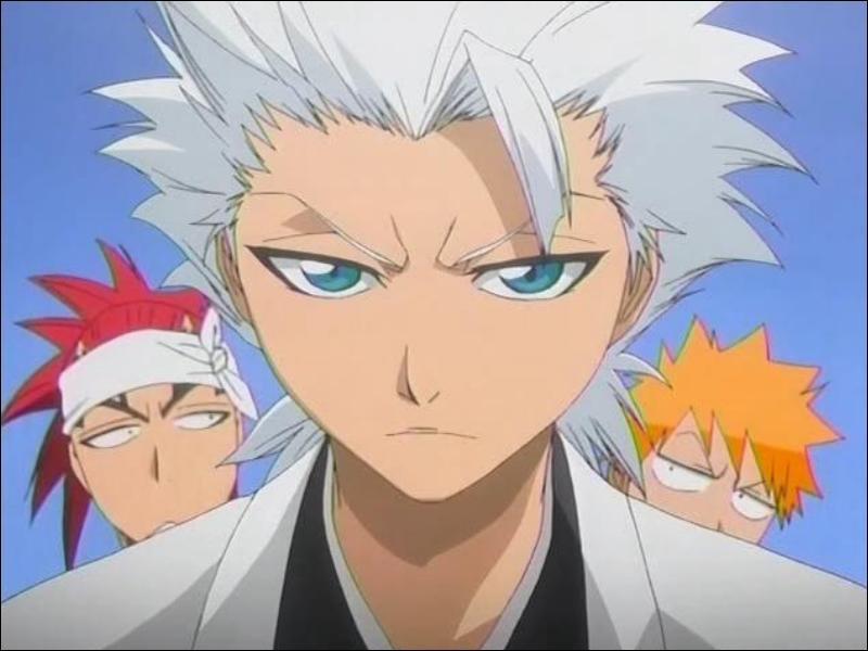 Que rétorque-t-il souvent à Ichigo ?