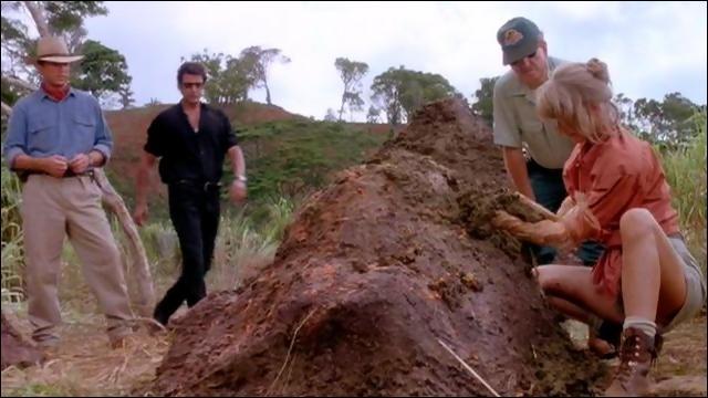 Ian Malcolm vient juste de finir d'expliquer la  théorie du chaos . Toute l'équipe descend pour soigner un Tricératops. Ellie Sattler demande à voir les excréments de ce dinosaure. Que lui conseille Ian Malcolm ?