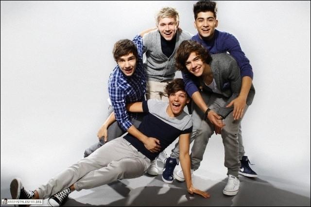 Qui a donné l'idée d'appeler le groupe  One Direction  ?