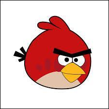 Quizz Angry Birds