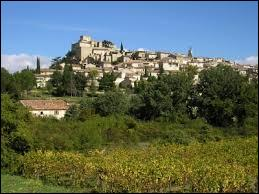 Pour commencer ce dernier voyage de l'année, je vous emmène à Ansouis. Classée parmi les Plus Beaux Villages de France, cette commune Vauclusienne se situe en région ...