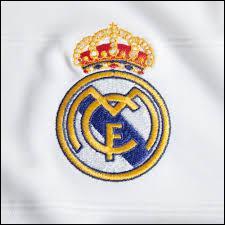 Quel est le nom de l'équipe arborant ce logo ?