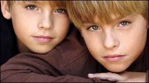Je joue dans  La Vie de palace de Zack et Cody . Je suis Zack :