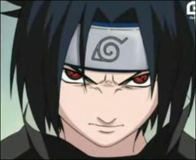 Quel est le nom de la technique utilisée par Sasuke qui a été recopiée par Naruto mais volée à Lee grâce au sharingan ?