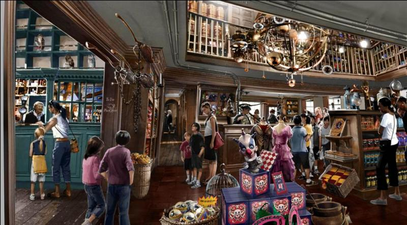 Commençons notre visite. Dans Pré-au-Lard se trouve le magasin  Derviche et Bang . Dans quels domaines magiques cette enseigne s'est-elle spécialisée avec le temps ?