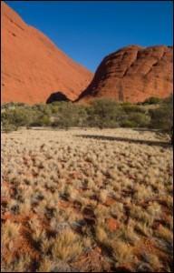 Dans quel pays se trouve le désert de l'Ayers Rock ?