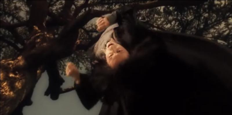 Lors d'un de ces cours, alors qu'il est seul, Harry Potter tombe dans la Pensine et accède à un souvenir de Severus Rogue. Que décrit ce souvenir douloureux pour Severus Rogue ?
