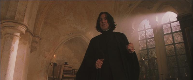 En 1991, Harry Potter fait son entrée à Poudlard. Il se confronte rapidement à Severus Rogue. Quel poste occupe-t-il alors à Poudlard dans  Harry Potter à l'école des sorciers  ?