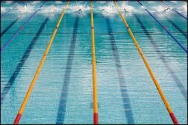 Quelle est la nage où l'on respire tous les 3 coups de bras ?