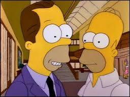 Qui est le demi-frère d'Homer ?