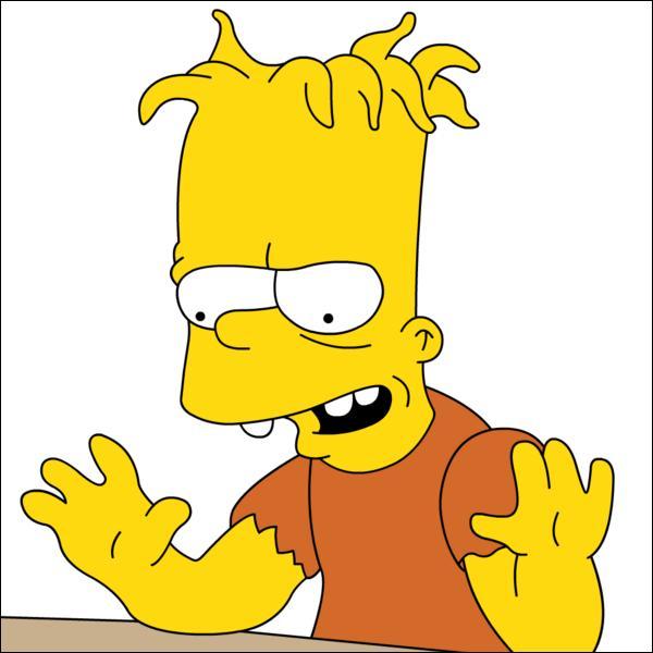 Qui est le frère siamois de Bart ?