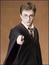 Quel est le métier d'Harry Potter ?