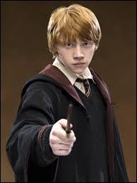 Quel métier fait Ron ?