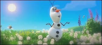 Le bonhomme de neige voudrait voir le :