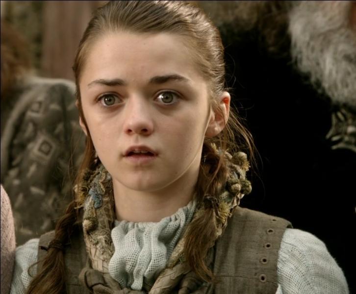 Comment s'appelle la plus jeune fille de la famille Stark ?