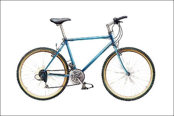 En regardant cette bicyclette, l'idée me vient de lui ajouter quelques sauterelles et papillons, juste pour vous aider !