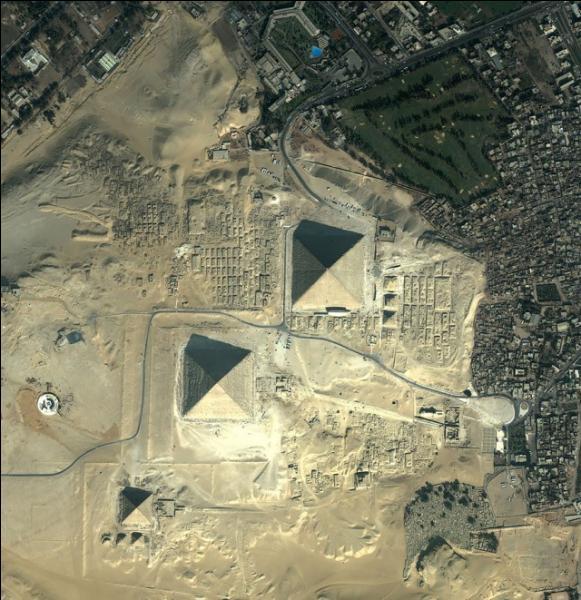 Quel animal associe son nom à celui des pyramides ?