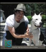 Quel est le nom de la fondation créée par Ian visant à recueillir les animaux maltraités dans un refuge ?