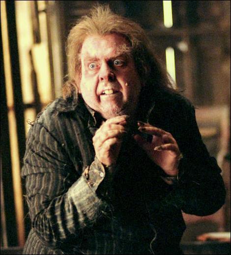 On parle souvent d'un sorcier animagus. Pour autant, quel est le pluriel de ce nom commun ?