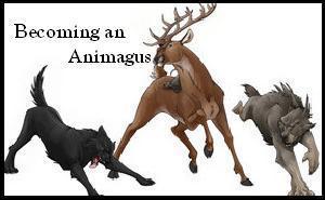 Comment pourrait-on définir simplement, dans le monde des sorciers, la notion d'Animagus ?