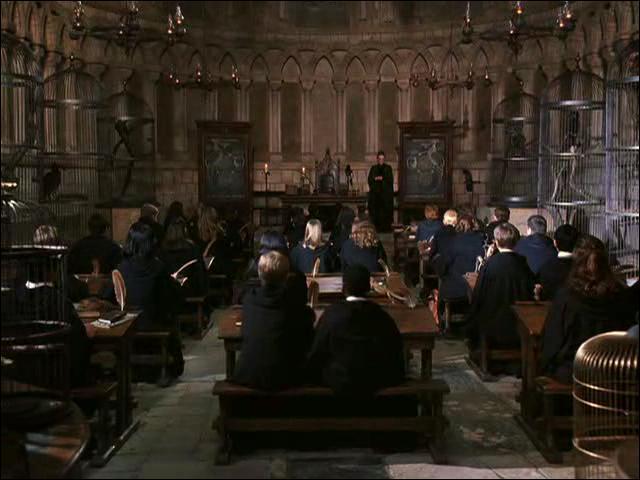 Bien que Severus Rogue ait effectué une digression sur le sujet lors du remplacement de Remus Lupin lors d'un cours de défense contre les forces du mal dans  Harry Potter et le prisonnier d'Azkaban, dans quel cours les étudiants de Poudlard sont-ils censés aborder la notion d'Animagus ?