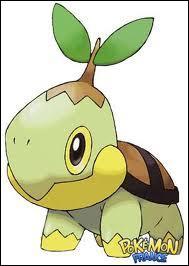 Tortipousse est le Pokémon de départ de quelle région ?