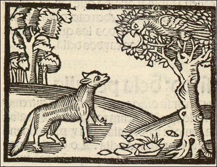 Comme un corbeau, plus noir que n'est la poix, / Était au haut d'un arbre quelquefois / Juché, tenant à son bec un fromage, / Un faux renard vint quasi par hommage / A lui donner le bonjour... Qui est l'auteur, né au XVe siècle ?