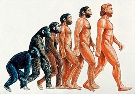 L'origine des espèces  est un ouvrage traitant de l'évolution et écrit par Jean-Baptiste de Lamarck.