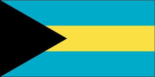 Le drapeau est celui du: