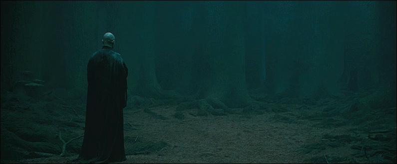 Harry Potter se présente seul à Lord Voldemort. Peu avant de lui lancer le Sortilège de la Mort, quelles sont les dernières paroles que le Seigneur des Ténèbres croit prononcer à son ennemi juré ?