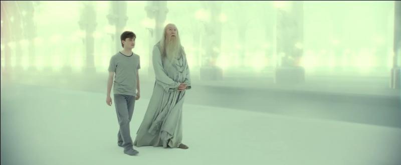 """Harry Potter se retrouve alors dans un état second. Il rêve d'une discussion avec Albus Dumbledore sur les révélations récentes qu'il a apprises. Dans quel """"endroit"""" lié au dogme catholique se retrouve-t-il ?"""