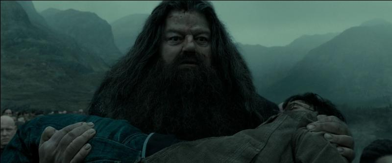 Lord Voldemort, pensant Harry Potter mort, part de la Forêt interdite avec les Mangemorts. Il se présente aux combattants restés dans Poudlard. Qui dépose le corps de Harry Potter à terre ?