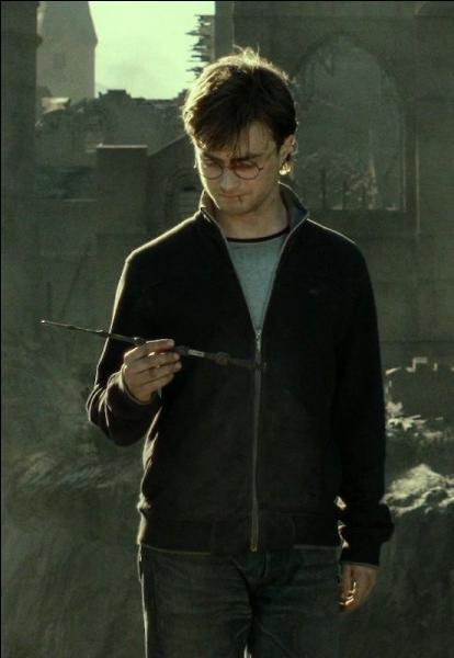 Juste après la fin de la Bataille de Poudlard, Harry Potter dispose de deux des trois reliques de la mort, faisant de lui un sorcier quasiment invincible. Que décide-t-il de faire pour briser ce cycle ?