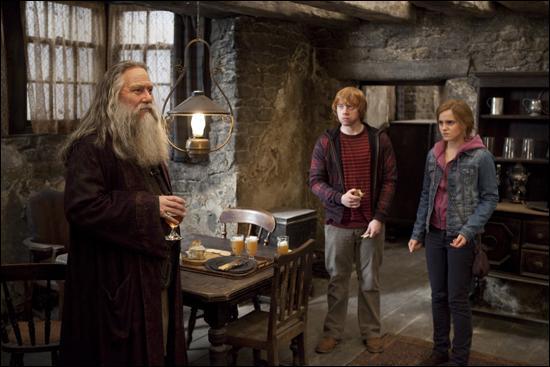 Harry Potter, Ron Weasley et Hermione Granger arrivent à Pré-au-Lard. Ils sont poursuivis par des Rafleurs, des milices de Mangemorts. Comment vont-ils se sauver de cette situation ?