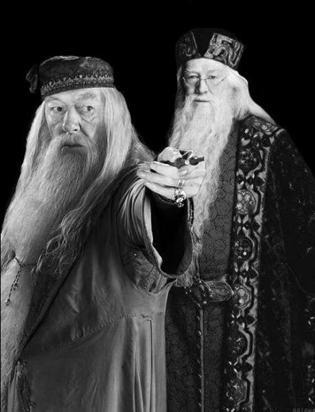 Lorsqu'il était jeune, sur quel horrible goût était tombé Dumbledore en mangeant une dragée surprise de Berthie Crochue ?