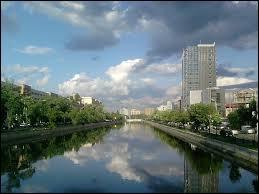 La Dambovita est un fleuve qui traverse la ville de :