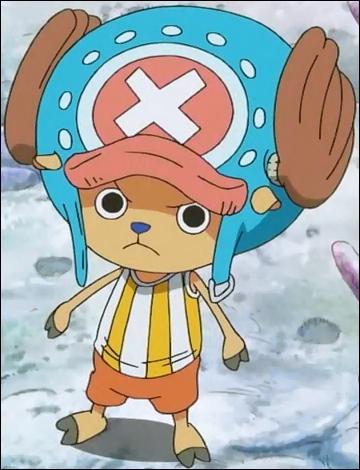 Le personnage Tony Tony Chopper, du manga Fairy Tail, possède un pouvoir de transformation.