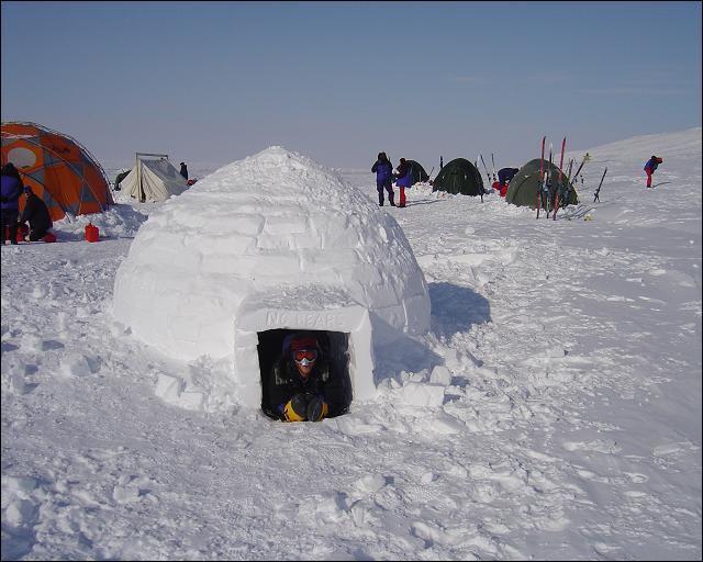 Inuit, Arctique, phoque !