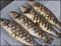 Quels sont ces poissons de la Garonne cuits sur un feu de sarments de vignes ?